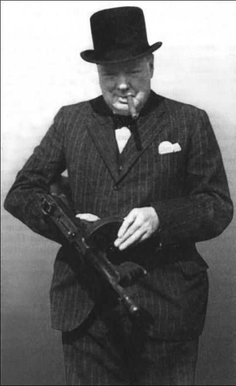WINSTON CHURCHILL THE RALEIGH DEGEER AMYX COLLECTION THE AMERICAN HERITAGE COLLECTION 