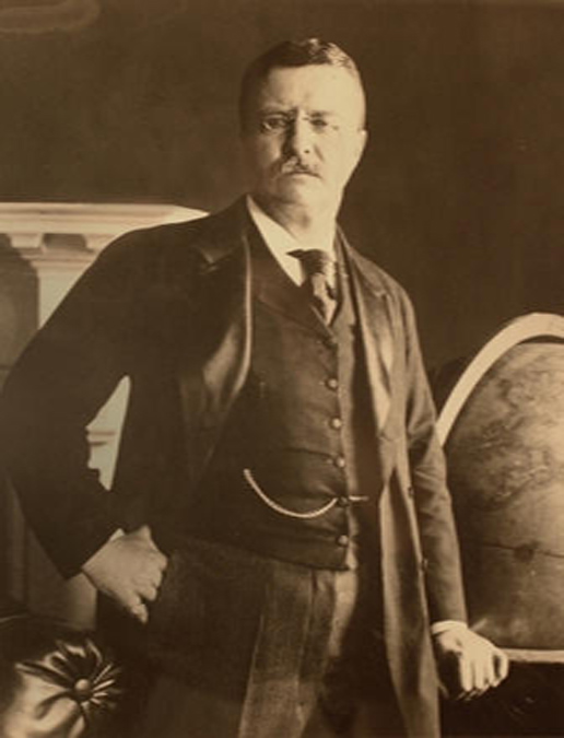 theodore roosevelt|presidential memorabilia|white house memorabilia|the raleigh degeer amyx collection|the american heritage collection|the raleigh degeer amyx collection|